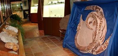 Museo Comarcal de Molina