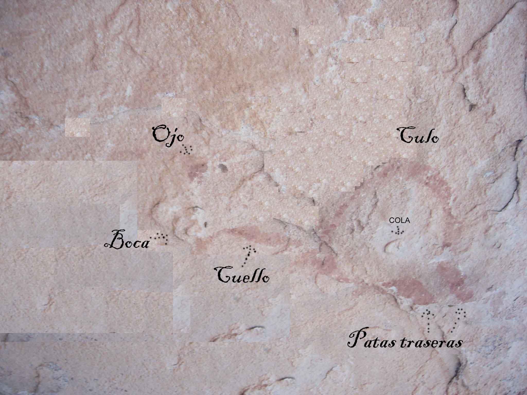 Las pinturas de Rillo II y explicación