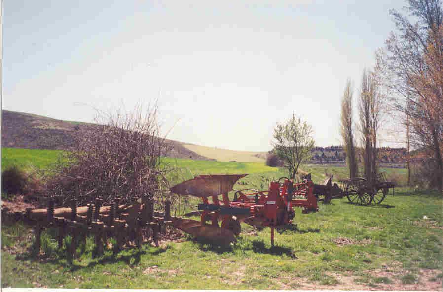Los últimos símbolos de la agricultura de Rillo descansan.